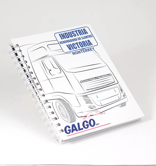 galgo1